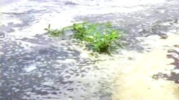 Video : Mumbai oil spill: Beach clean-up campaign begins