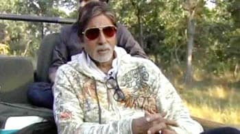 Video : Big B joins hands with NDTV to Save our Tigers