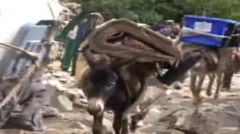Video : Donkey lifeline for Afghan polling stations