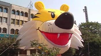 Videos : गुब्बारे से बनाया नौ लाख का शेरा
