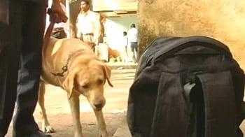 Video : भर्ती होंगे 200 खोजी कुत्ते