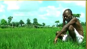 Videos : बिहार में सूखा, जायजा लेगी टीम
