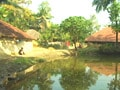 Video: India Matters: Saving fish from drowning