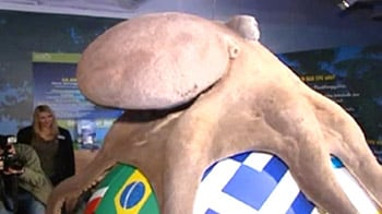 Video : Paul the Octopus immortalised in soccer avatar