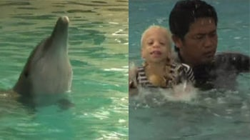 Video : Dolphins with 1000 patients