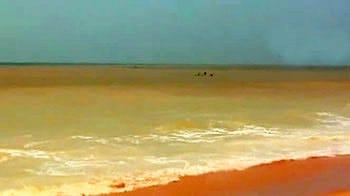 Video : Acid destroys Kerala beach