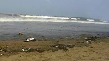 Video : Mumbai oil spill: Is the damage-control too little, too late?