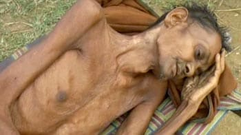 Video : Starving to death in their old age