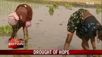 Video : Andhra farmers worried over delayed rain