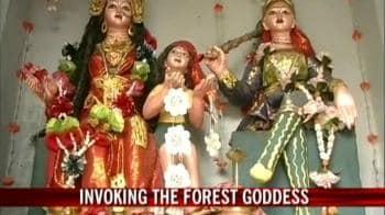 Video : Faith survives in the Goddess of the Sunderbans