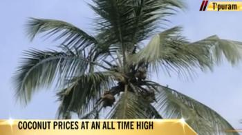 Video : Coconut prices in Kerala at an all-time high