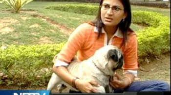 Video : For all the animal lovers...