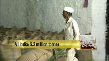 Video : Sugar crisis: Scam or policy failure?