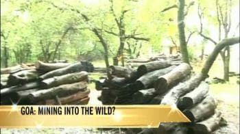 Video : Goa: Mining into the wild?
