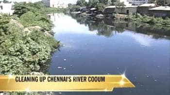 Video : Will the Cooum river be Chennai's Thames?