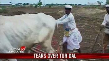 Video : Tears over tur dal