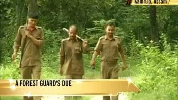Video : A forest guard's due