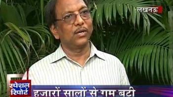 Videos : Scientists zero in on 'Sanjeevani booti'