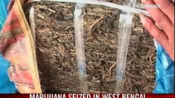 Video : Marijuana seized in West Bengal